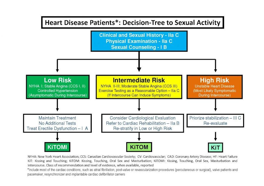 Heart Disease Patients: Decision-Tree to Sexual Activity. Diagram Credit: Canadian Journal of Cardiology