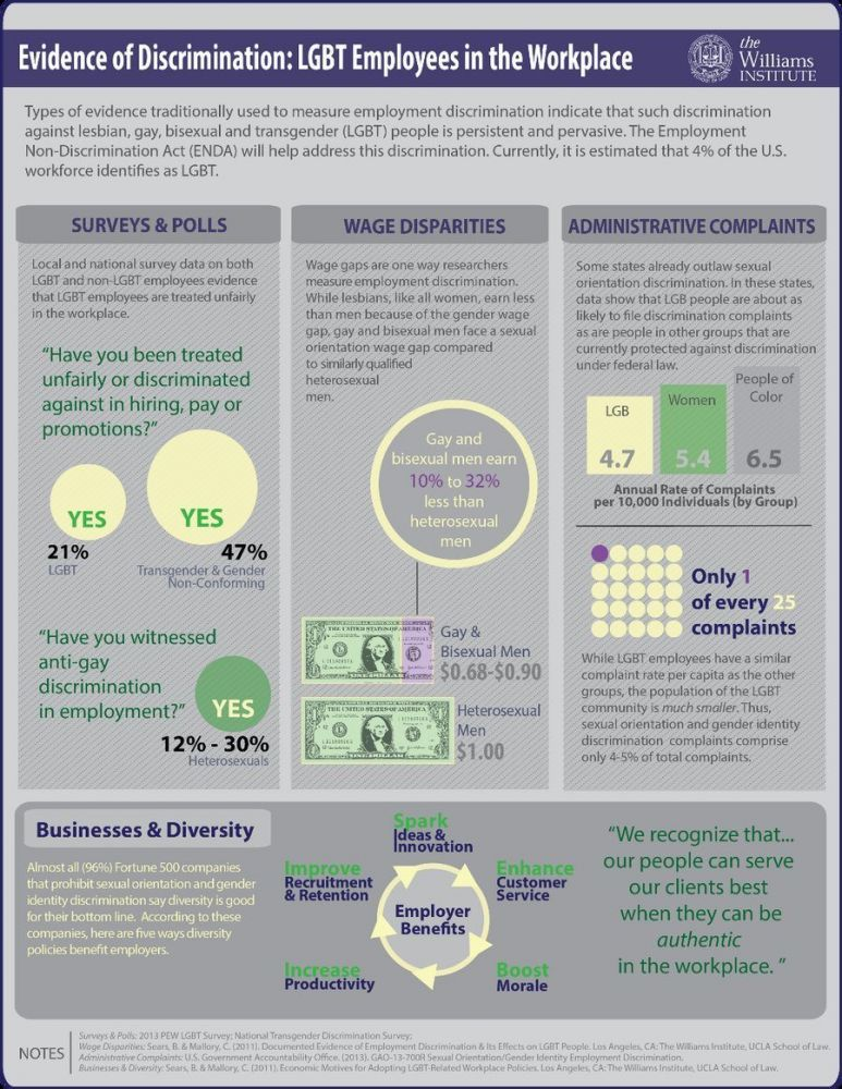 LGBT Employment Discrimination Infographic